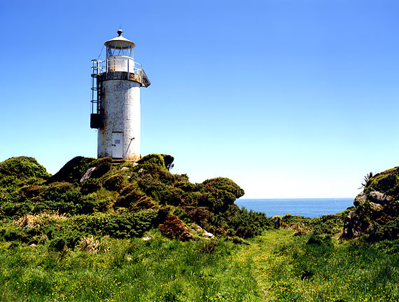 NZ | Cape Foulwind