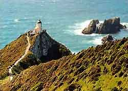 NZ | Nugget Point